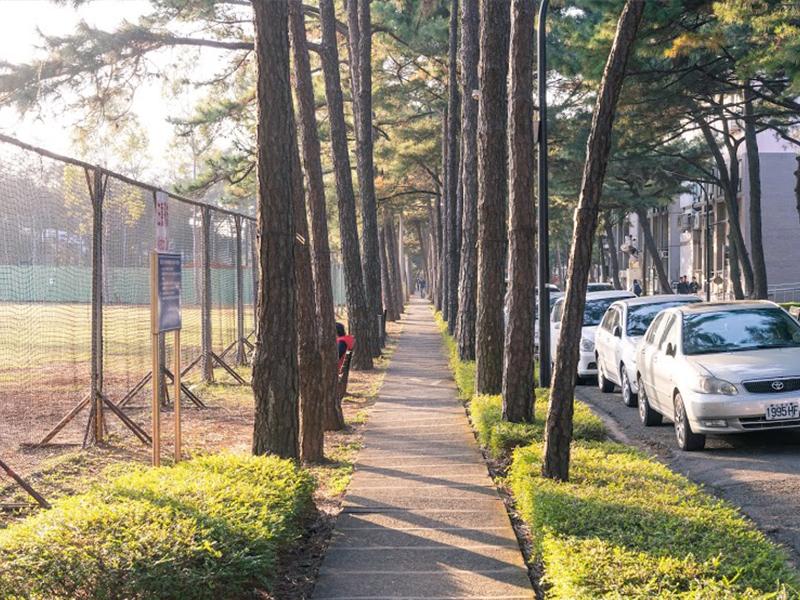 環校小徑(Pine-tree Path)